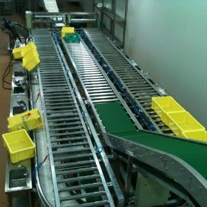 Conveyor Belt Roller - Automate Technology